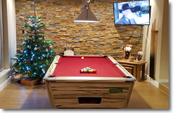 Supreme Winner Pool Table in Artwood Finish